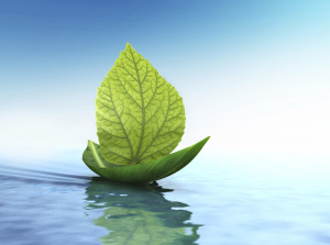 leaf float